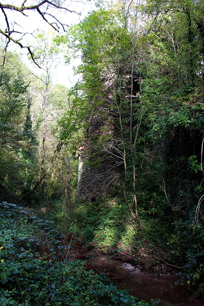 Tour du château de Tanus le Vieux (Tarn)